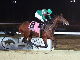 HUSH OF A STORM remains unbeaten at Turfway, winning the $100k John Battaglia Stake.