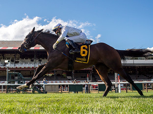 TOBYS HEART becomes a stakes winner in her second start.