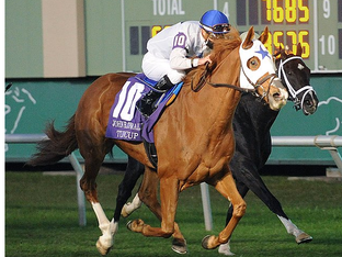 Roden Bloodstock Exacta in the G3 Connally Turf Cup.