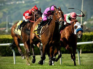 ALERT BAY captured the Rolling Green Stake at Golden Gate for the second time in his career