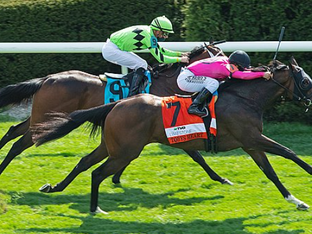 TOBY'S HEART takes the Limestone Sprint Stake at Keeneland.