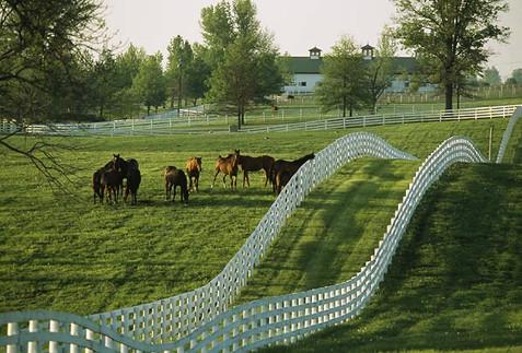 Iconic Bluegrass scenery.