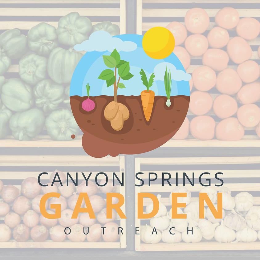 Gardening Workshop Part 2