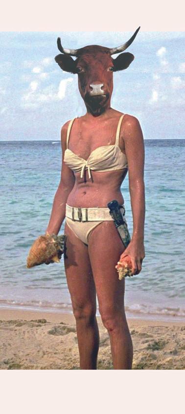 A Hawaï, en bikini