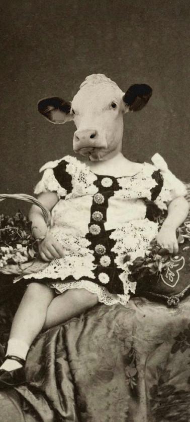 La Tante Ophélie