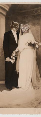 1950, Françoise, la fille de Félix et Félicienne, se marie avec le jeune Edmond Matou.