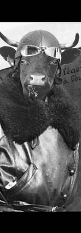1932, sur les traces d'Hélène Boucher