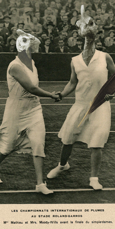 Championnats de Plume à Roland Garros