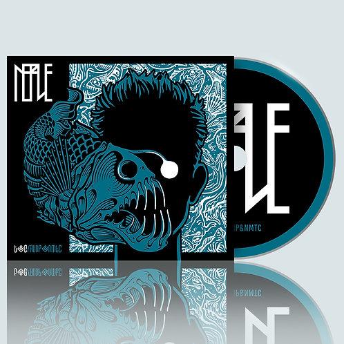 """CD """"T&C/AVNP&NMTC"""""""