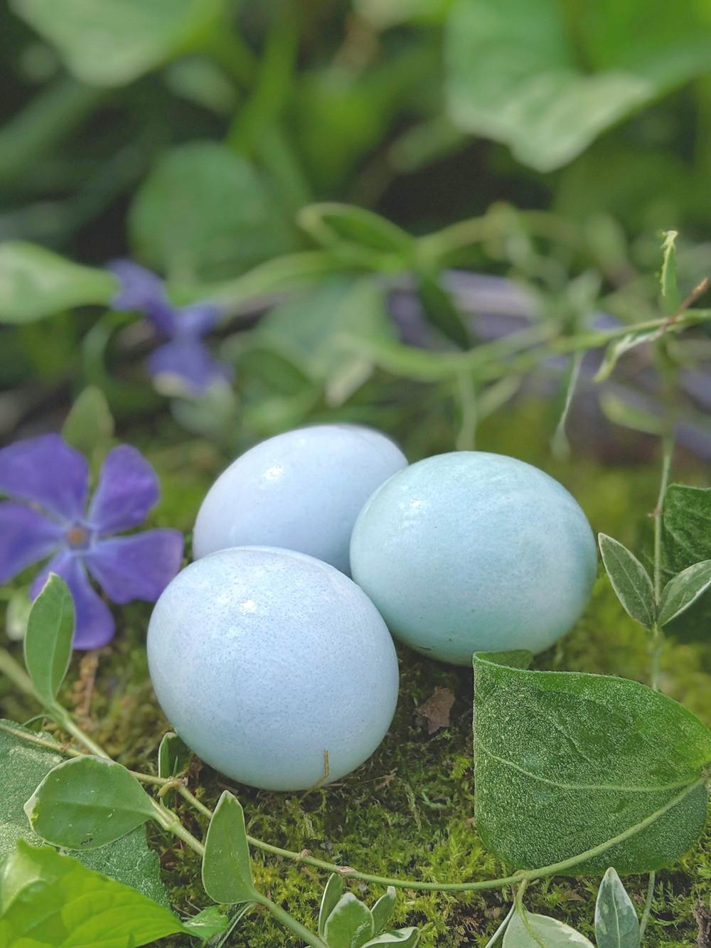 Natural Easter egg dye (cabbage juice)