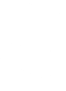 SkydiveAwesome_Logo_White_edited.png