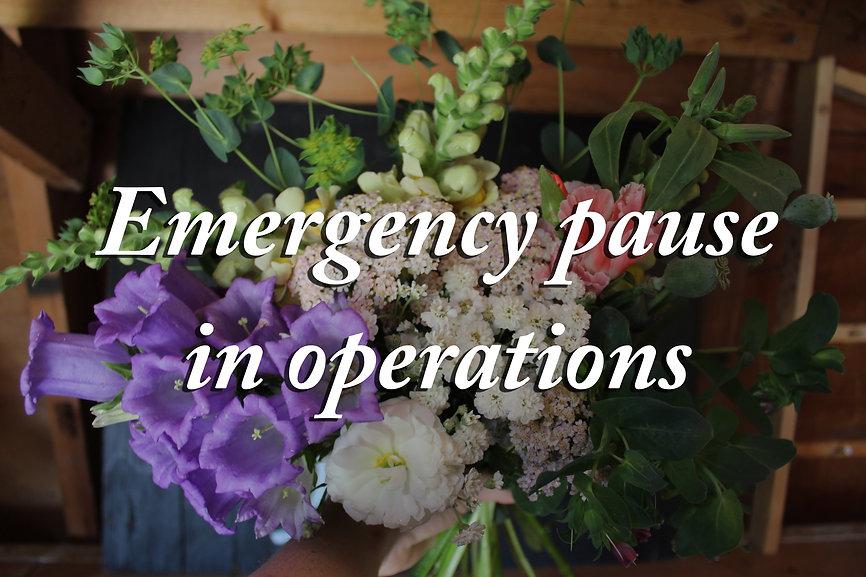 EmergencyPause.jpg
