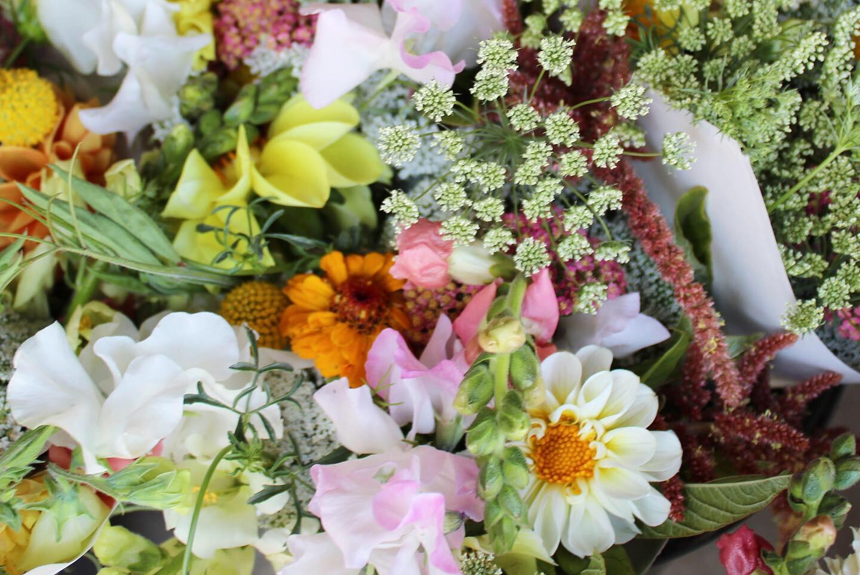 AGA summer flowers
