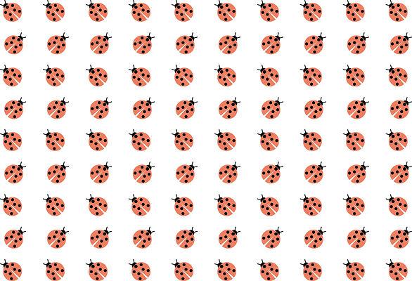 Ladybird pattern.jpg