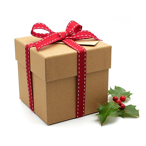Christmas mug box1.jpg