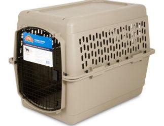 Dog-Travel-Crate-Petmate-Petsmart.jpg