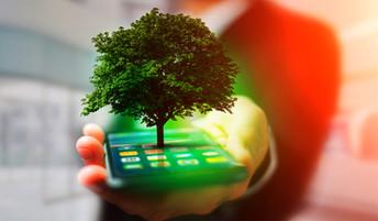 Telecomunicaciones y Medioambiente: nuevas dificultades para el salto tecnológico en Chile.