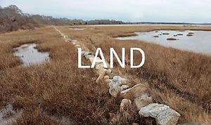 MSH-land-2.jpg