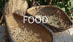 MSH-food-2.jpg