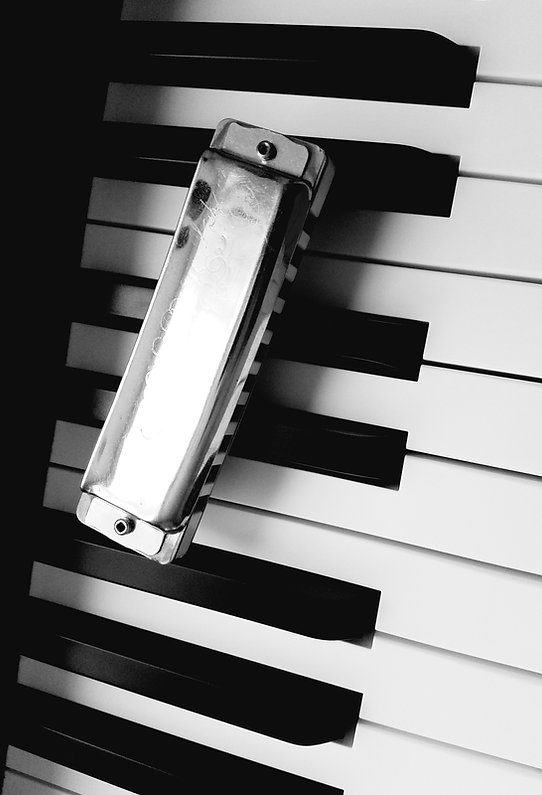 Seydel Harmonica and Piano Keys