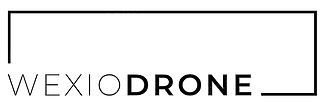 WexioDrone Logo.png