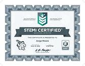 STEM CERT_JORGE.jpg