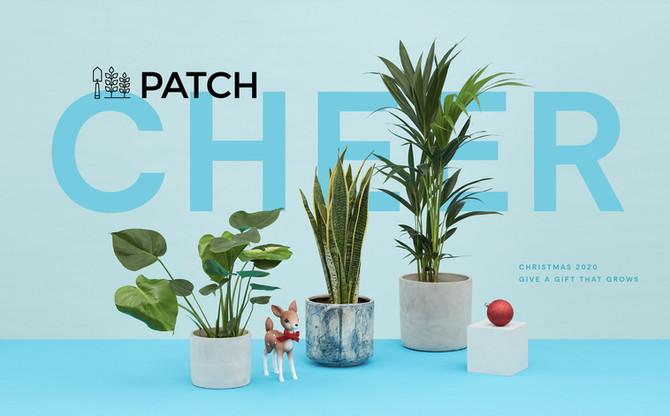 prop-stylist-london-homeware-patch-plants-set-design-product-stylist