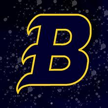 Bruins 2019 logo.png
