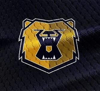 Bruin 2018 champs banner_edited.jpg