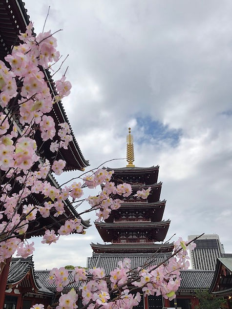 tempio tokyo.jpg