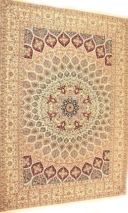 Nain Habibian  303 x 210