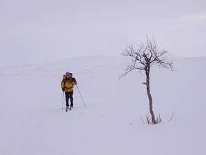 Guy's First Arctic Ski Touring Trip. Part Six.