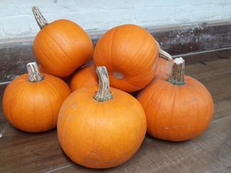 Pumpkins anyone?