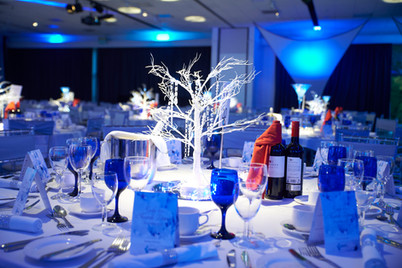 Themed Party hire - Decor Hire West Sussex