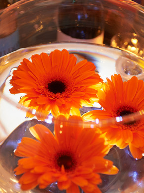 Fish Bowl and Flowers Code: T006 £10.50 +VAT Includes Mirror Base Plate