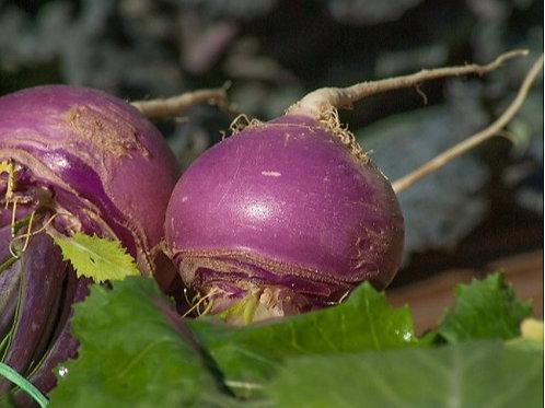 Turnip Bottoms