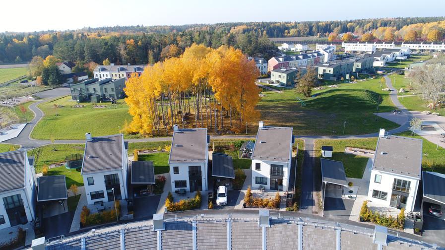 Södra parkvillorna  Foto: Produktionsbolaget Alex och Martin