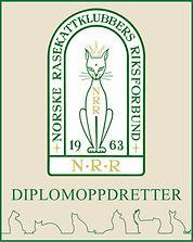 Diplom-link-1.jpg