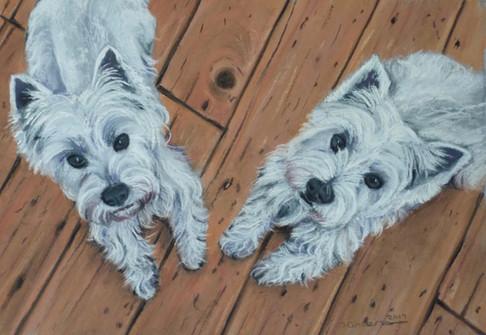 'Bella & Basil'