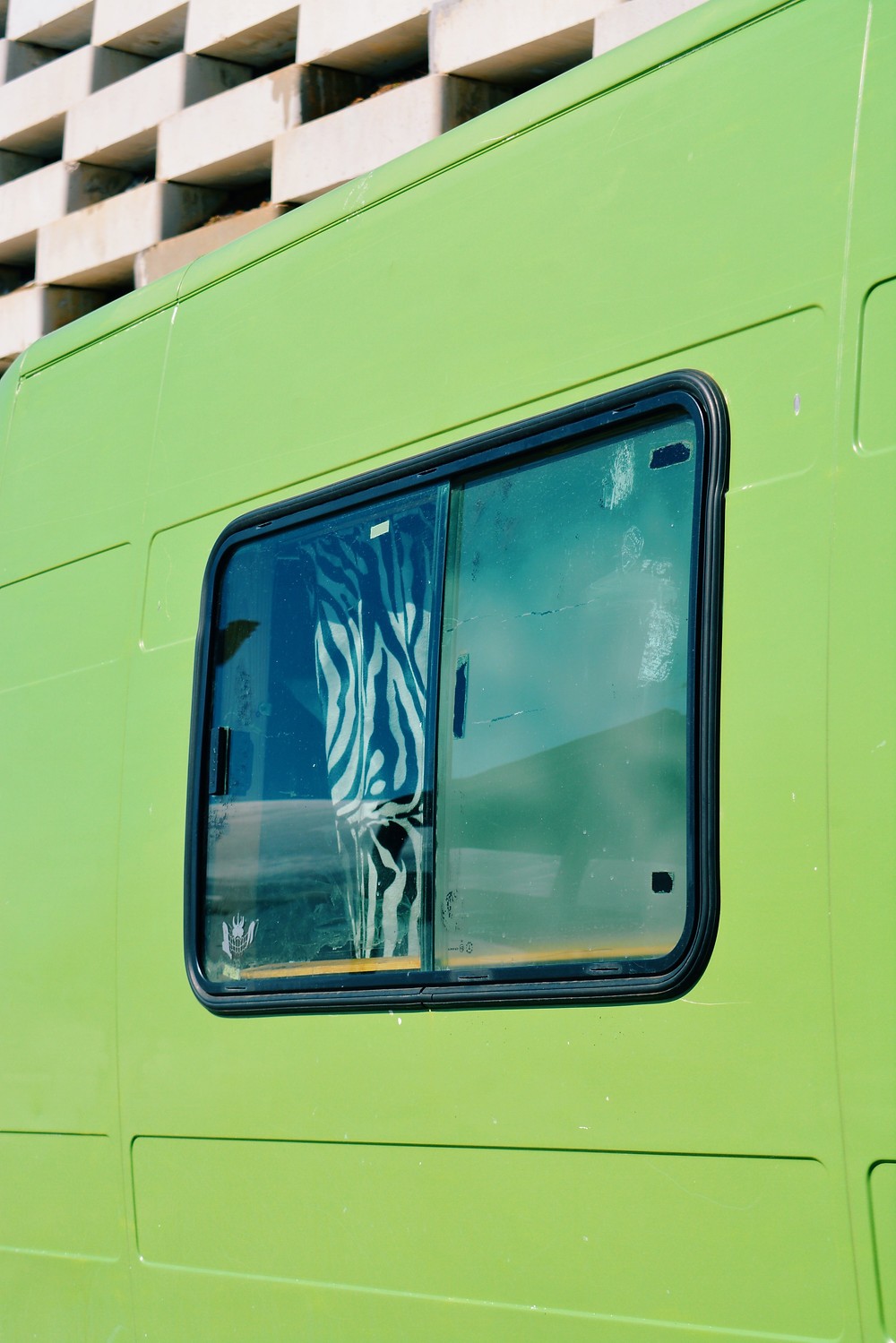 Close up of the window of a green van. A curtain with a zebra pattern can also be seen.