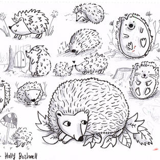 Hedgehog Character Study