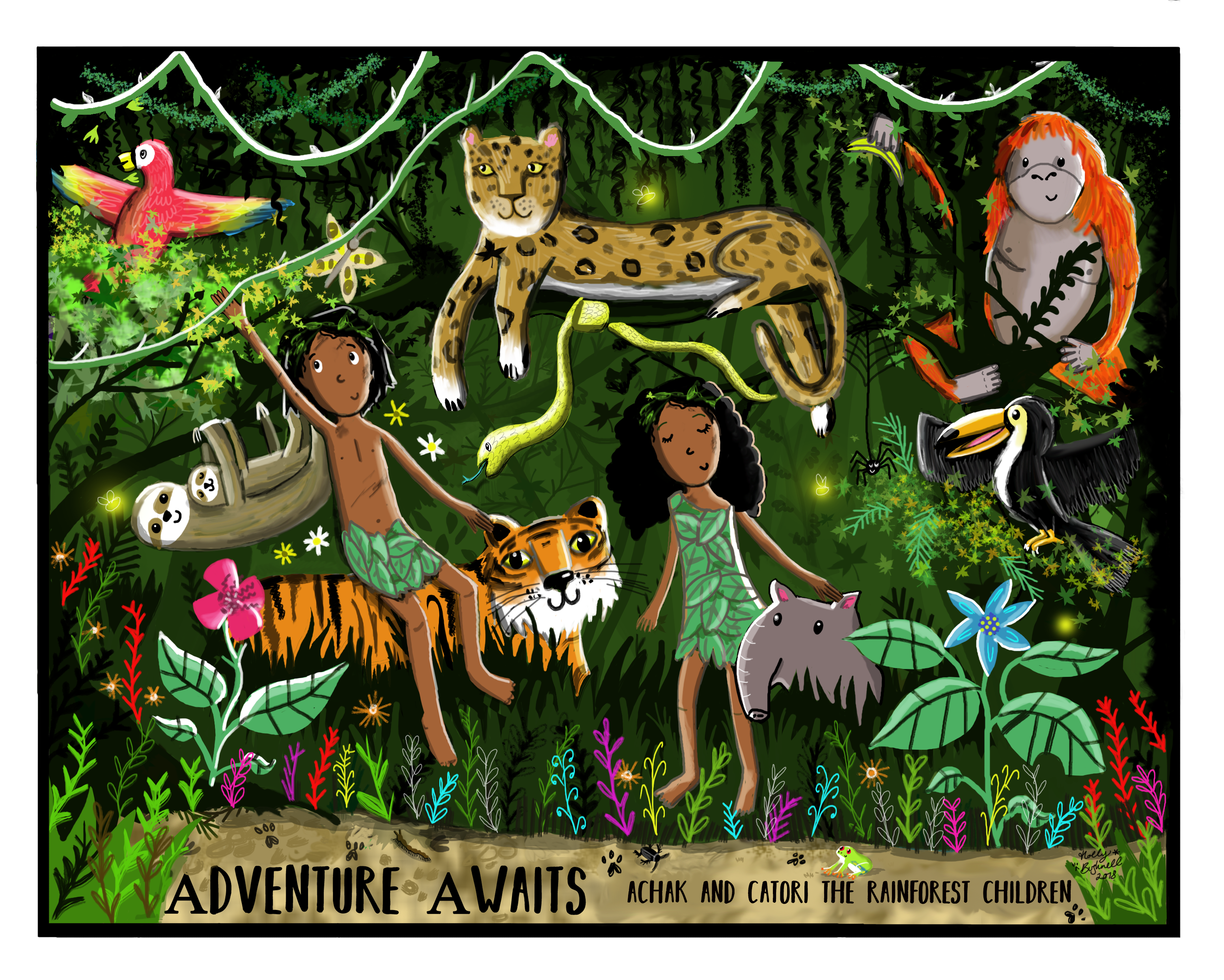 Rainforest - Adventure Awaits Series