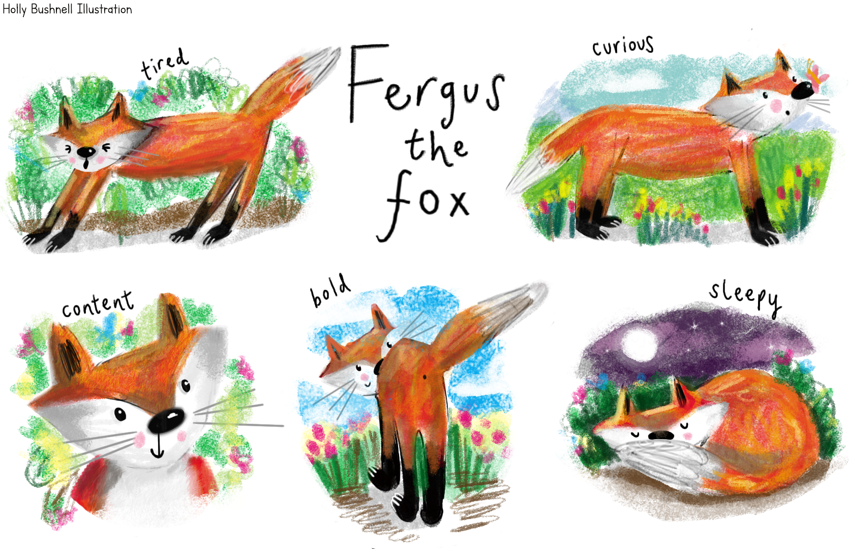 Fergus the Fox Character Design