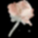 rose-bud-2.png