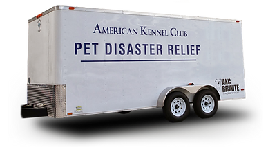 AKC-Reunite-Trailer-Only.png