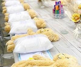 teddy bear, stuff a bear