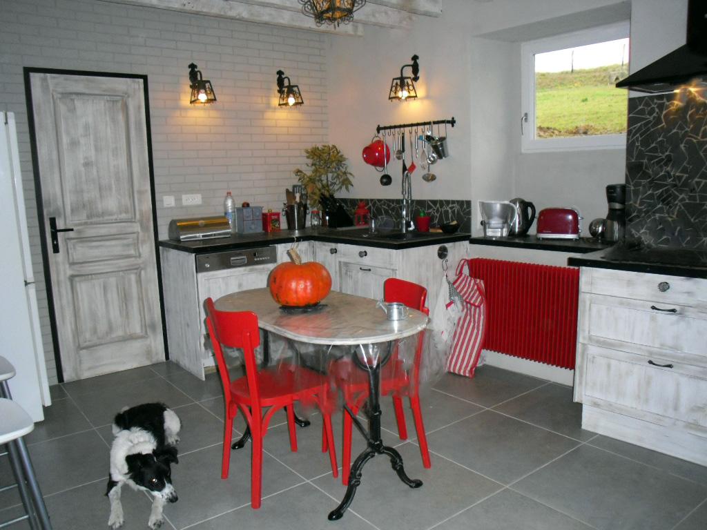 cuisine grise et rouge