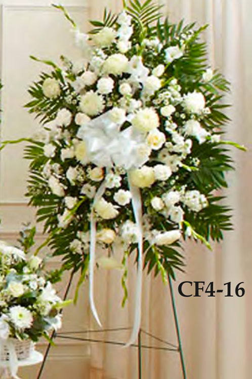 CF4-16