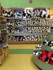 panda-store_t20_b8pELV.jpg