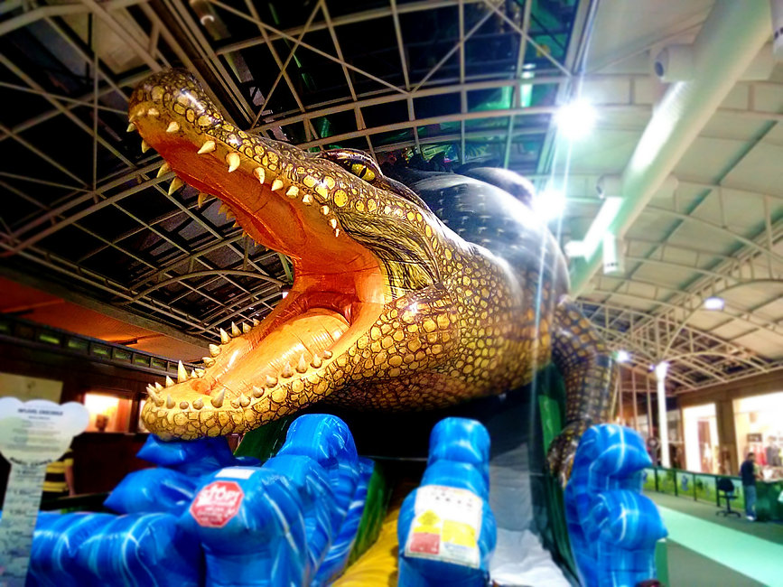 crocodile-playground-fun-amusement-park-